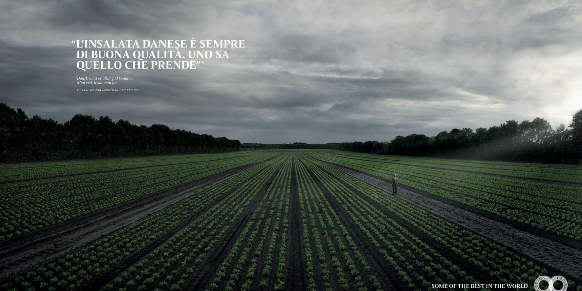 Landbrug & Fødevarer
